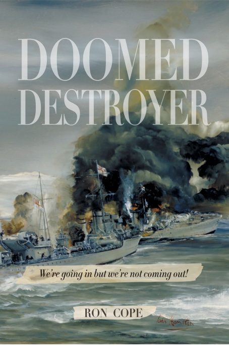 Doomed Destroyer Cover