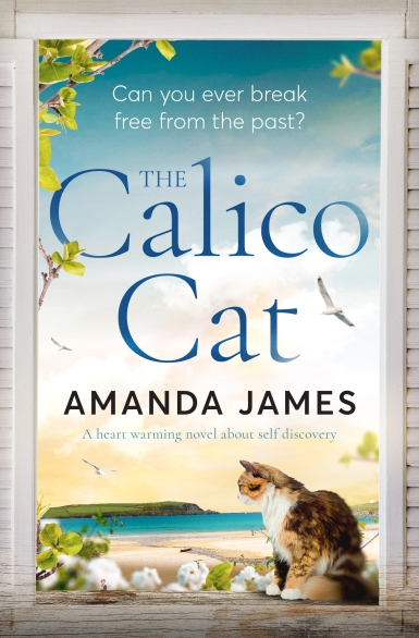 Amanda James - The Calito Cat_cover_high res.jpg