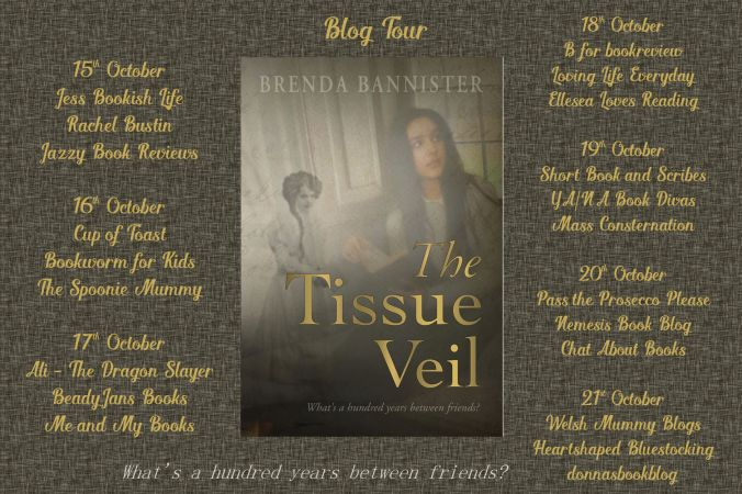 The Tissue Veil Full Tour Banner.jpg