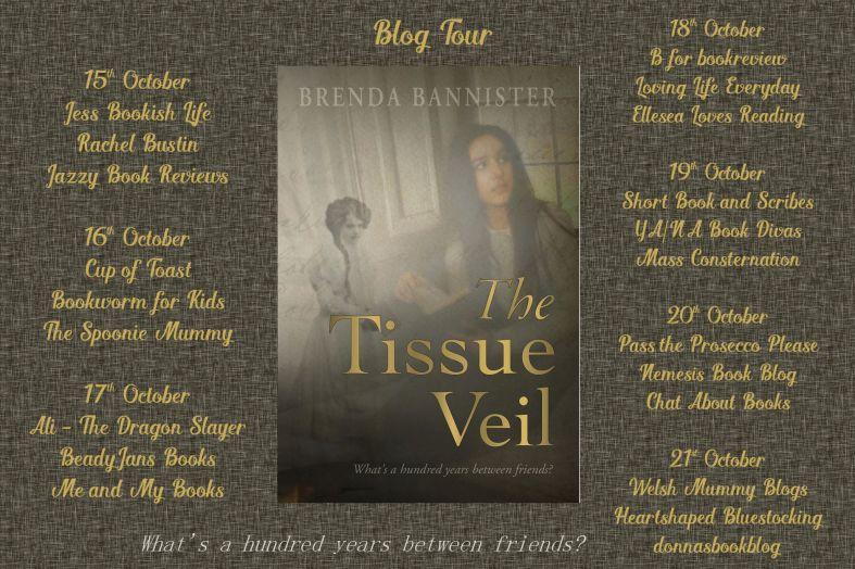 The Tissue Veil Full Tour Banner.jpg